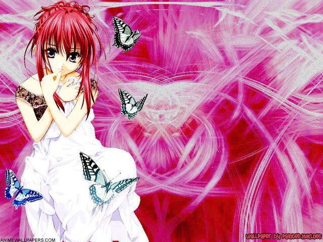 DNAngel Anime Wallpaper #27