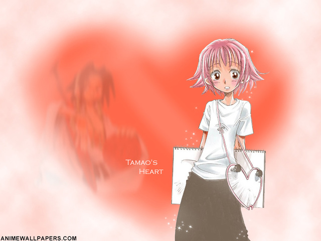 Shaman King Anime Wallpaper #1