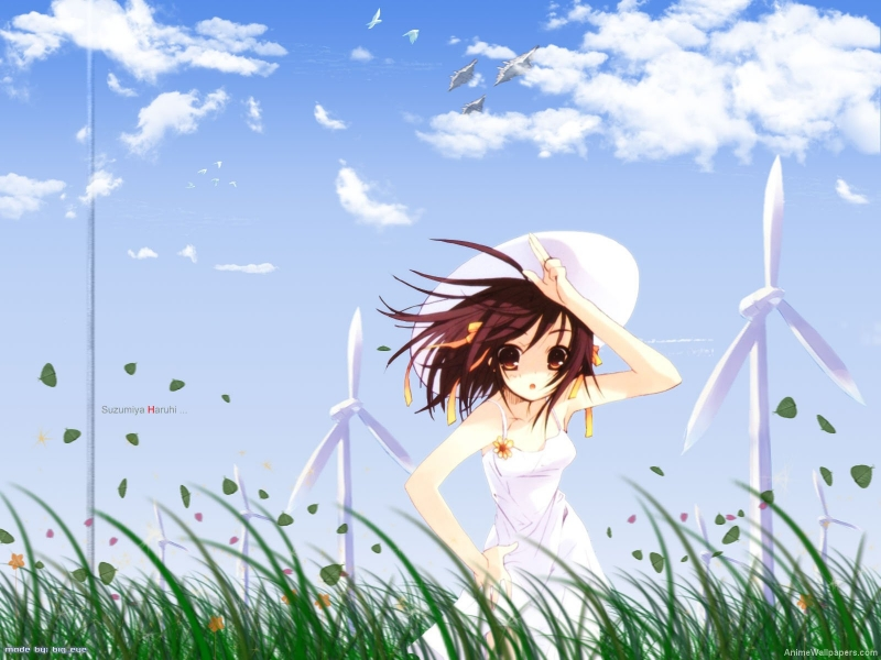 The Melancholy of Haruhi Suzumiya Anime Wallpaper # 5